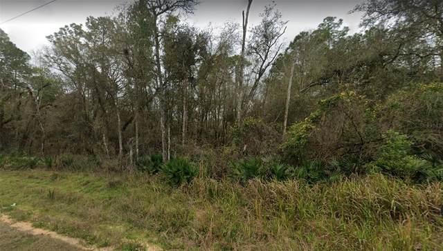 N Canal Street, Webster, FL 33597 (MLS #W7833951) :: Sarasota Home Specialists