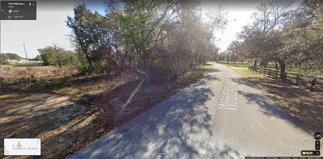 0 WILD CAT LN, New Port Richey, FL 34654 (MLS #W7833958) :: Gate Arty & the Group - Keller Williams Realty Smart