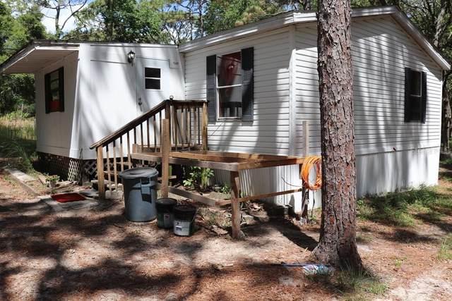 6421 Sunnyside Ranch Road, Brooksville, FL 34602 (MLS #W7833980) :: Zarghami Group