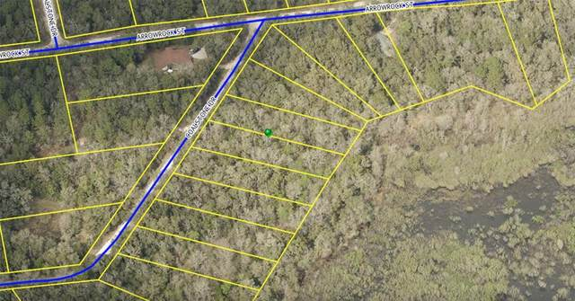 Coalstone Drive, Webster, FL 33597 (MLS #W7833988) :: Your Florida House Team