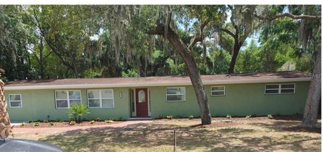 6430 Missouri Avenue, New Port Richey, FL 34653 (MLS #W7834026) :: Sarasota Home Specialists
