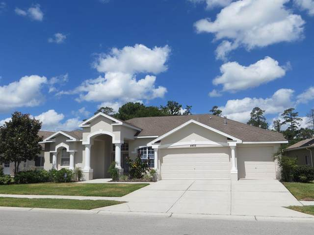 4455 Gevalia Drive, Brooksville, FL 34604 (MLS #W7834028) :: The Robertson Real Estate Group