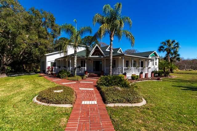 9208 Creston Avenue, New Port Richey, FL 34654 (MLS #W7834050) :: Vacasa Real Estate