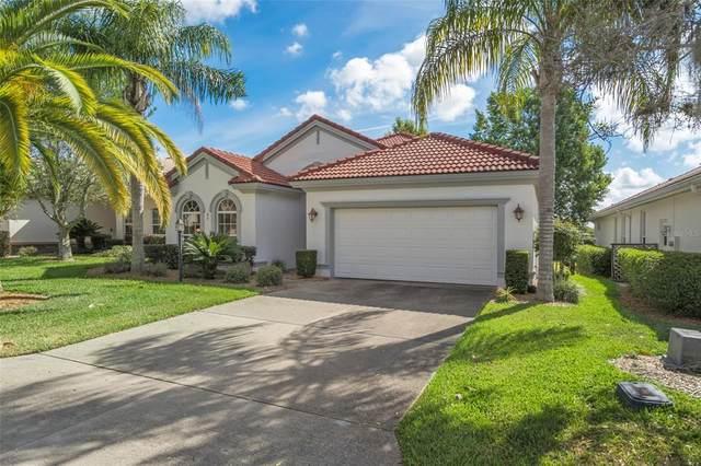 67 W Doerr Path, Hernando, FL 34442 (MLS #W7834142) :: Everlane Realty