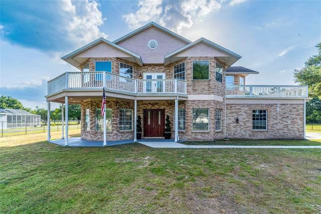736 W Deer Lake Drive, Lutz, FL 33548 (MLS #W7834284) :: Everlane Realty
