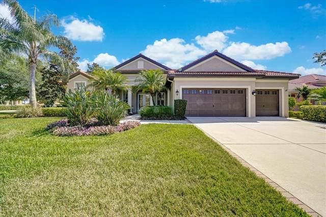 1325 El Pardo Drive, Trinity, FL 34655 (MLS #W7834297) :: Coldwell Banker Vanguard Realty
