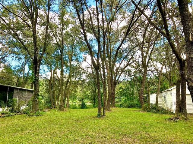 16123 Hanna Road, Lutz, FL 33549 (MLS #W7834340) :: Delgado Home Team at Keller Williams