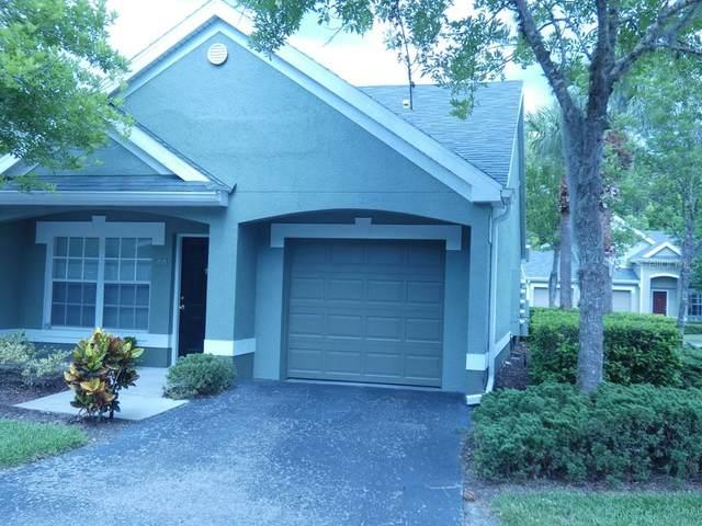 3635 Trafalgar Way #104, Palm Harbor, FL 34685 (MLS #W7834380) :: Delgado Home Team at Keller Williams