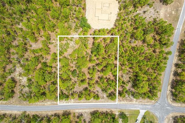 Flagstaff Drive, Weeki Wachee, FL 34614 (MLS #W7834417) :: The Robertson Real Estate Group