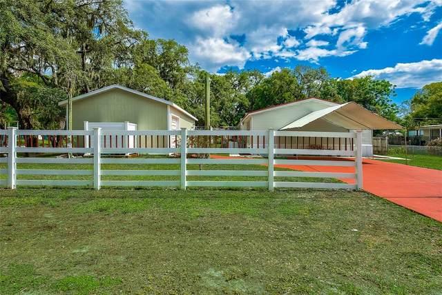 9100 Mango Street, New Port Richey, FL 34654 (MLS #W7834429) :: Sarasota Home Specialists