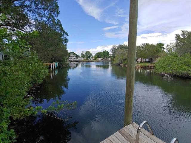 14624 Colette Street, Hudson, FL 34667 (MLS #W7834477) :: Armel Real Estate