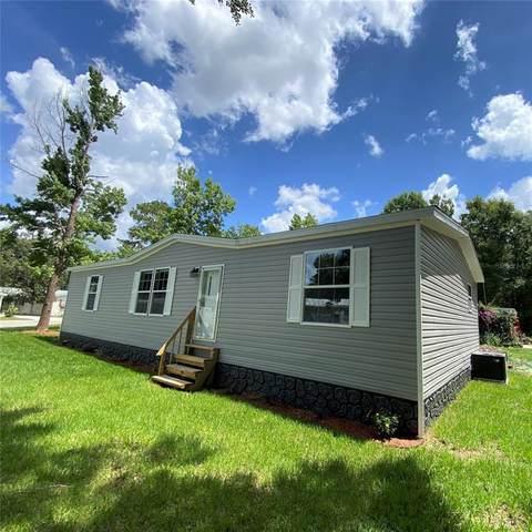 7152 Sunnyside Drive, Brooksville, FL 34601 (MLS #W7834522) :: Armel Real Estate
