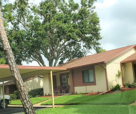 7501 Greystone Drive, Hudson, FL 34667 (MLS #W7834523) :: Team Bohannon