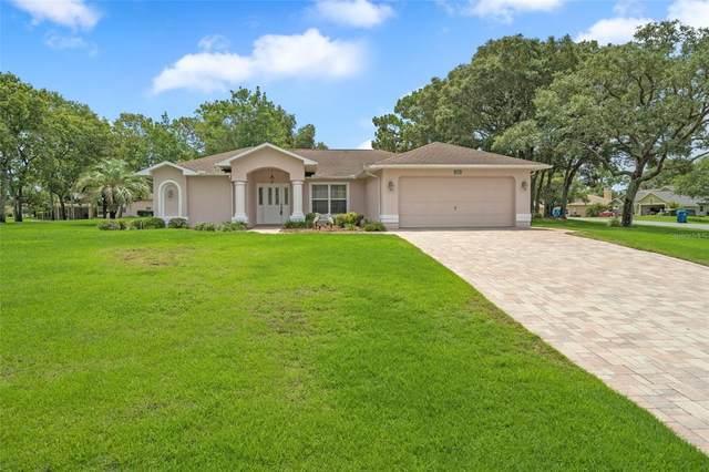486 Druid Road, Spring Hill, FL 34609 (MLS #W7834574) :: RE/MAX Premier Properties