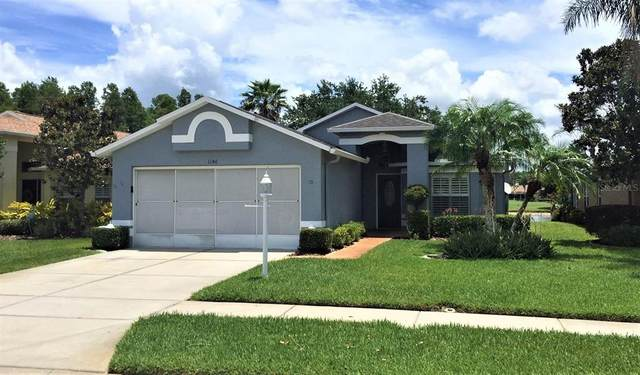 1146 Winding Willow Drive, Trinity, FL 34655 (MLS #W7834636) :: BuySellLiveFlorida.com