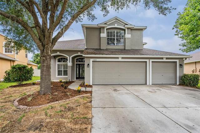 11203 Oyster Bay Circle, New Port Richey, FL 34654 (MLS #W7834643) :: The Home Solutions Team | Keller Williams Realty New Tampa