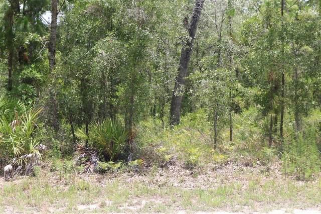 Nimick Road, Brooksville, FL 34614 (MLS #W7834653) :: Team Turner