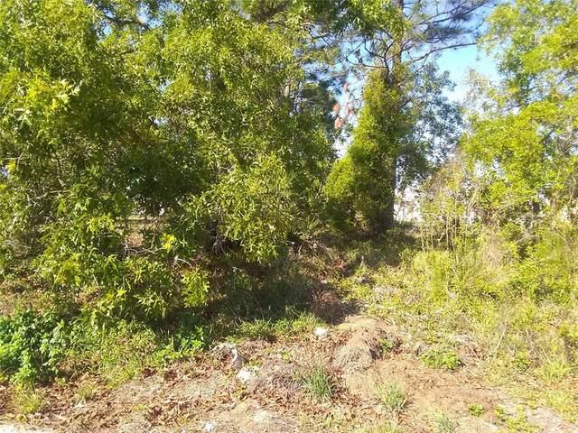 11396 Parkview Street, Spring Hill, FL 34609 (MLS #W7834672) :: Pepine Realty