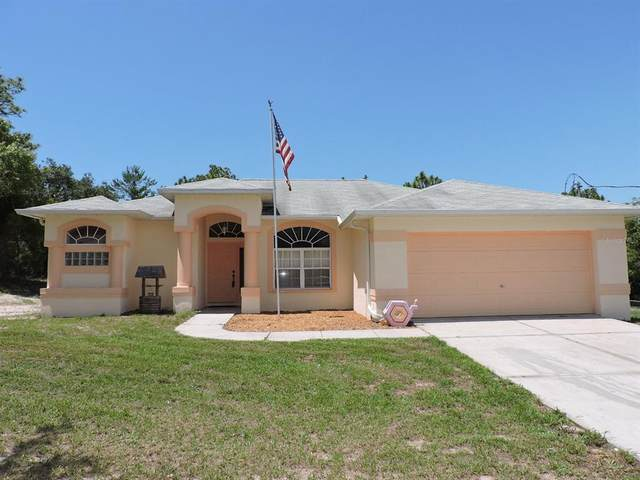 11333 Gallinule Avenue, Weeki Wachee, FL 34613 (MLS #W7834676) :: The Hustle and Heart Group
