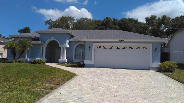 8723 Kipling Avenue, Hudson, FL 34667 (MLS #W7834679) :: Everlane Realty