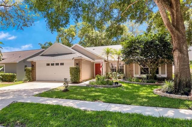 1671 Autumnwood Street, Tarpon Springs, FL 34689 (MLS #W7834689) :: RE/MAX LEGACY