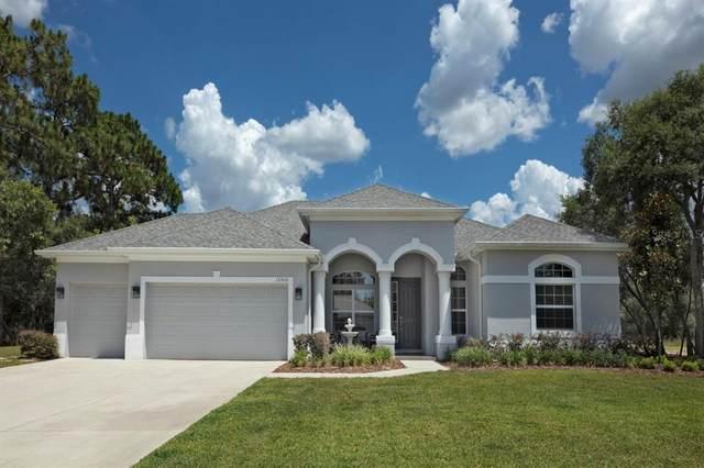 17910 Oggie Lane, Hudson, FL 34667 (MLS #W7834706) :: Armel Real Estate