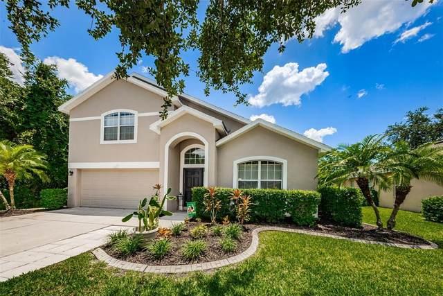 12021 Colony Lakes Boulevard, New Port Richey, FL 34654 (MLS #W7834712) :: Dalton Wade Real Estate Group