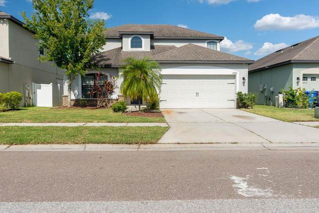 11886 Thicket Wood Drive, Riverview, FL 33579 (MLS #W7834724) :: Dalton Wade Real Estate Group