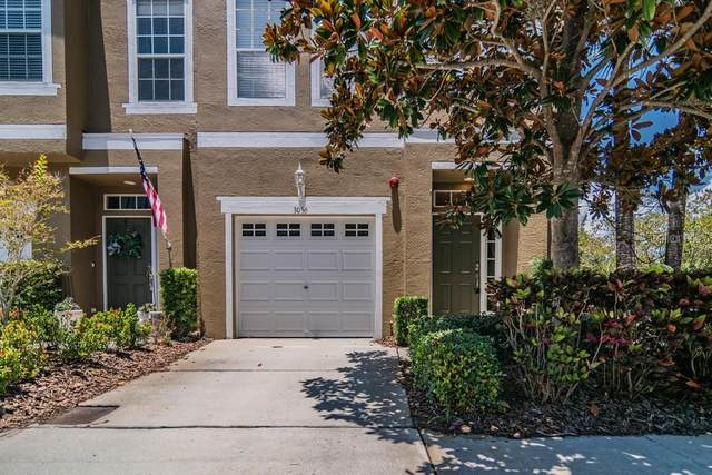 3056 Pointeview Drive, Tampa, FL 33611 (MLS #W7834744) :: Cartwright Realty