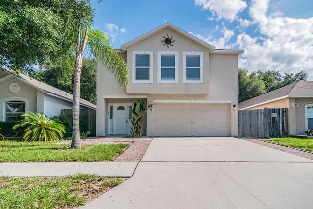 30526 Double Drive, Wesley Chapel, FL 33545 (MLS #W7834751) :: Delgado Home Team at Keller Williams