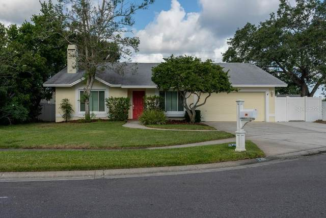 726 Heathrow Lane, Palm Harbor, FL 34683 (MLS #W7834759) :: Godwin Realty Group