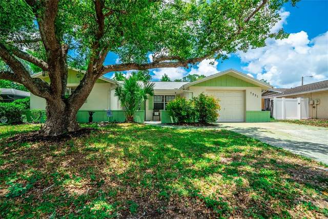 7331 San Miguel Drive, Port Richey, FL 34668 (MLS #W7834772) :: BuySellLiveFlorida.com