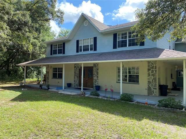 15216 Dennis Drive, Hudson, FL 34669 (MLS #W7834789) :: Vacasa Real Estate