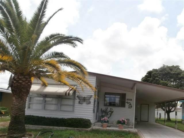 3210 Lanark Drive, Holiday, FL 34690 (MLS #W7834809) :: Everlane Realty