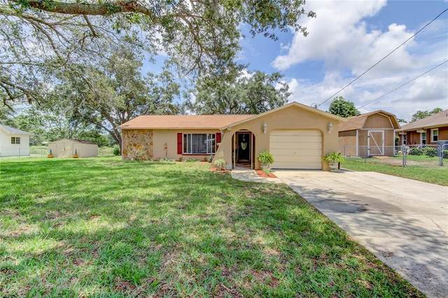 1231 Oldsmar Avenue, Spring Hill, FL 34608 (MLS #W7834816) :: Kelli and Audrey at RE/MAX Tropical Sands
