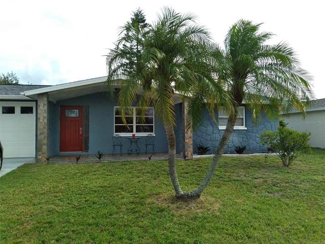 3603 Nixon Road, Holiday, FL 34691 (MLS #W7834823) :: Rabell Realty Group