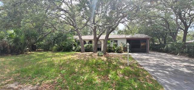 2163 Clayton Avenue, Spring Hill, FL 34609 (MLS #W7834831) :: Kelli and Audrey at RE/MAX Tropical Sands