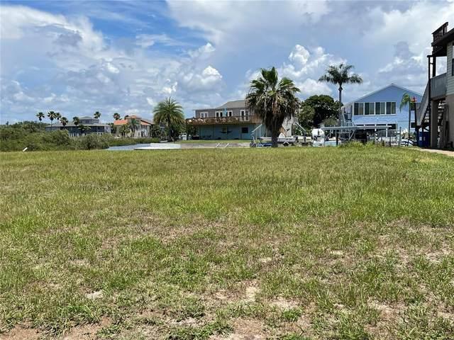 0 Bertram Drive, Hudson, FL 34667 (MLS #W7834833) :: Armel Real Estate