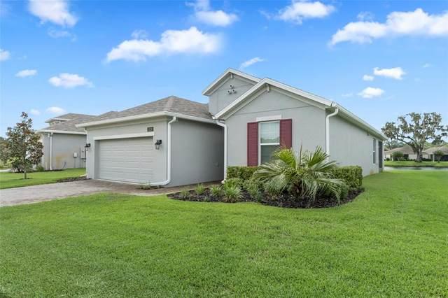 5220 Cappleman Loop, Brooksville, FL 34601 (MLS #W7834865) :: Expert Advisors Group