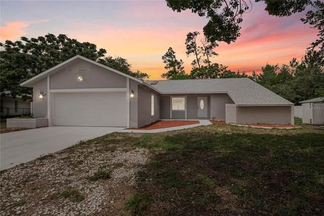 6257 Swan Lane, Spring Hill, FL 34608 (MLS #W7834868) :: Everlane Realty