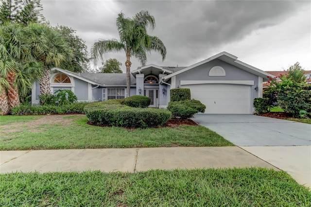 13528 Woodside Drive, Hudson, FL 34667 (MLS #W7834877) :: EXIT Realty Positive Edge