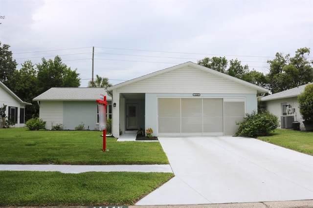 11115 Rollingwood Drive, Port Richey, FL 34668 (MLS #W7834889) :: Expert Advisors Group