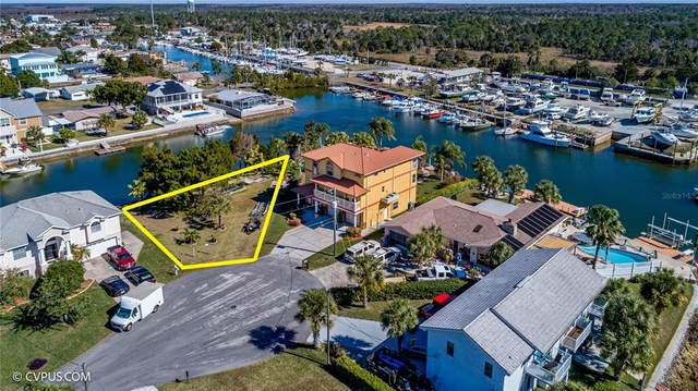 0 Carlos Court, Hernando Beach, FL 34607 (MLS #W7834891) :: Zarghami Group