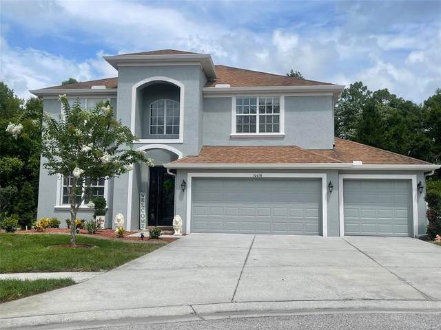 10636 Deerberry Drive, Land O Lakes, FL 34638 (MLS #W7834892) :: Gate Arty & the Group - Keller Williams Realty Smart