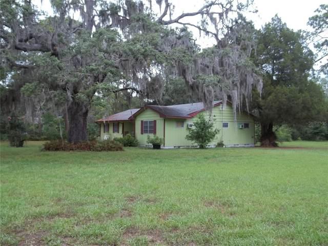 7123 Plathe Road, New Port Richey, FL 34653 (MLS #W7834918) :: Cartwright Realty