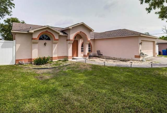 4205 Weldon Avenue, Spring Hill, FL 34609 (MLS #W7834934) :: Everlane Realty