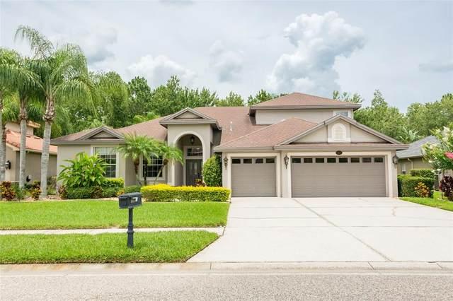 16048 Ivy Lake Drive, Odessa, FL 33556 (MLS #W7835012) :: Team Bohannon