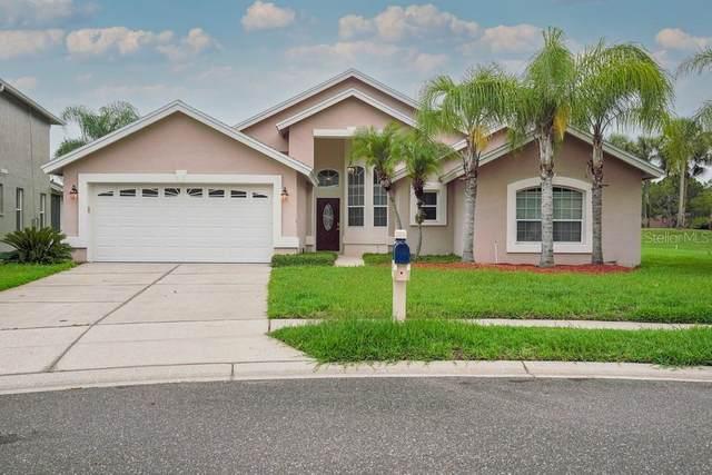3205 Fox Squirrel Lane, Valrico, FL 33596 (MLS #W7835021) :: The Robertson Real Estate Group