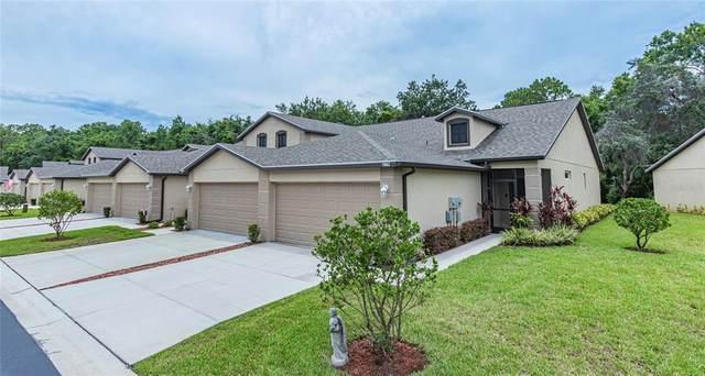 7665 Dawson Creek Lane, New Port Richey, FL 34654 (MLS #W7835033) :: Coldwell Banker Vanguard Realty