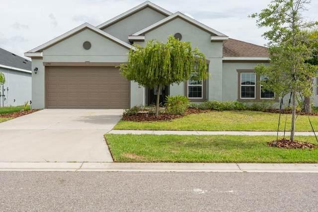 11743 Sunburst Marble Road, Riverview, FL 33579 (MLS #W7835051) :: Team Bohannon